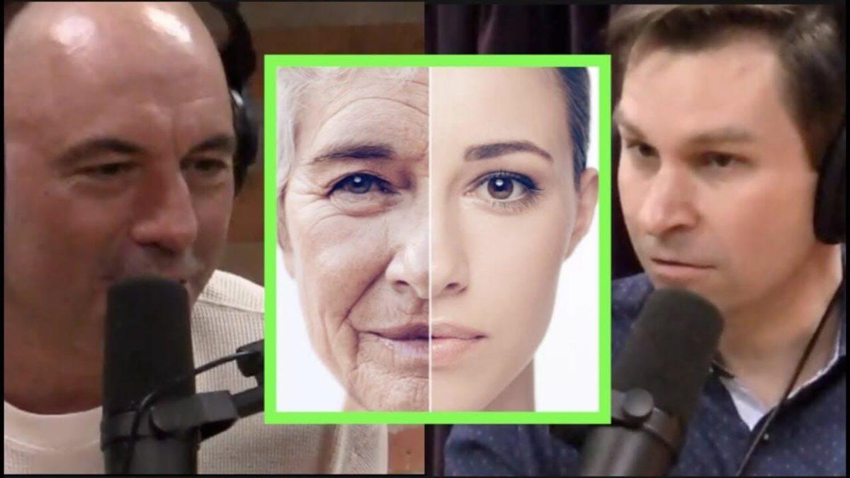 Дэвид Синклер и Джо Роган - Как избежать старения